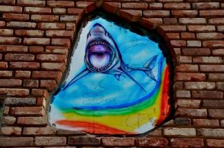 Glasschilderij Haai