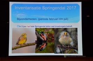 Robert Westerhof, Springendal